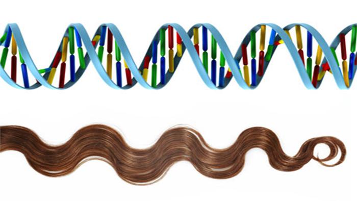 News_Splitting_hairs_to_advance_forensic_science_700x394.jpg